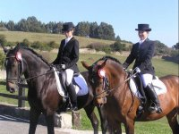 Equestrian social competitions