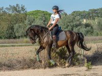 Horse Riding tour in Palamós 1 h with drink