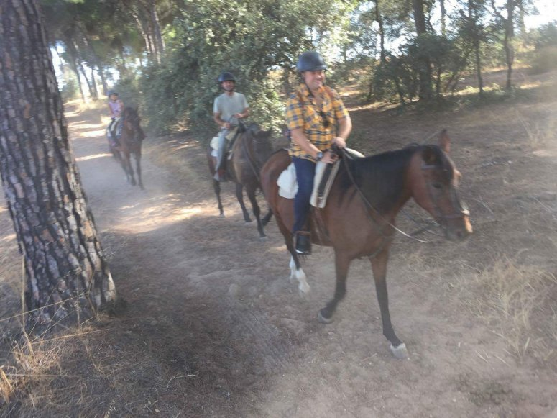 res_o-37824-rutas-a-caballo_de_rafael-rodriguez_15026902604368.jpg