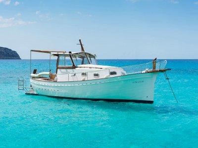 马略卡乘船4小时的帕尔马湾