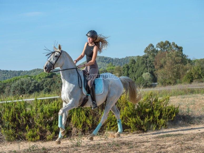 Excursión a caballo por Palamós