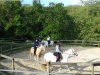 Dando vueltas a la pista a caballo