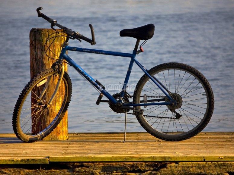 Alquiler de bicicletas en Fuerteventura