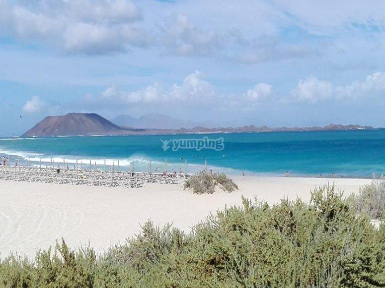 富埃特文图拉北部的海滩