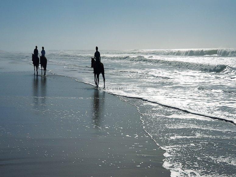 Usciremo sulla bellissima spiaggia