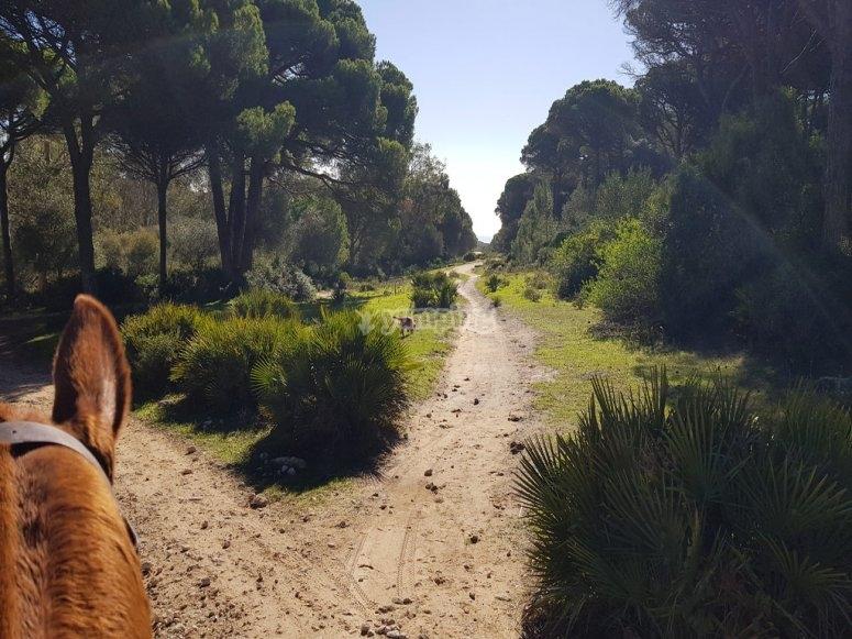 Escursione attraverso il Parco Naturale