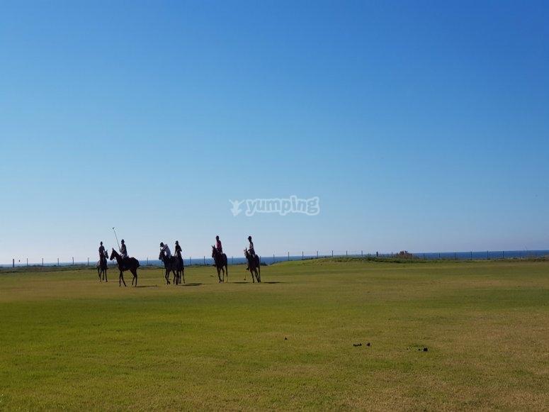 Giochi di equitazione