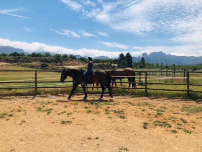 Natural dressage riding lesson Horta de Sant Joan