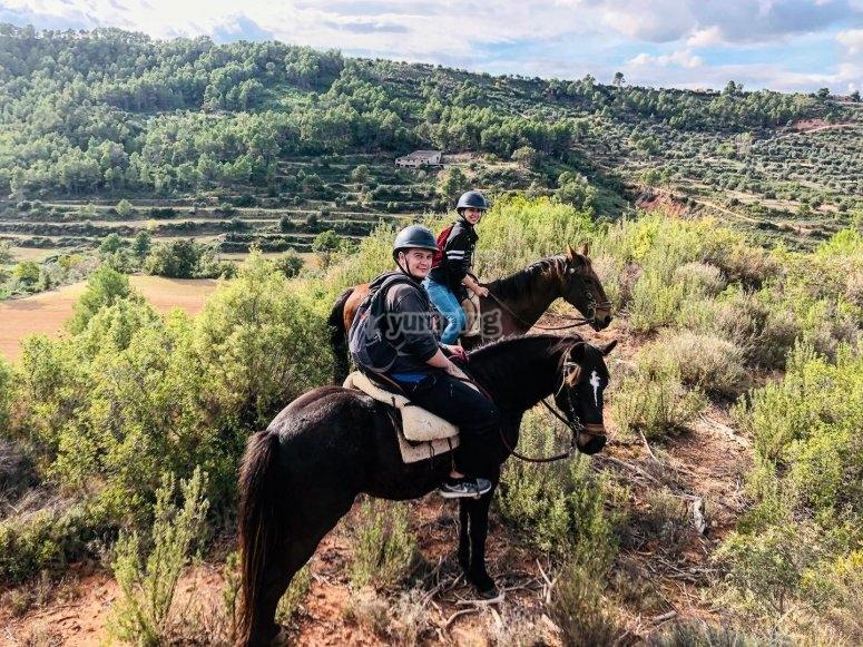 关于路线上的马匹