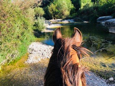 Ruta a caballo Assut de Lledó 10 km 2 horas