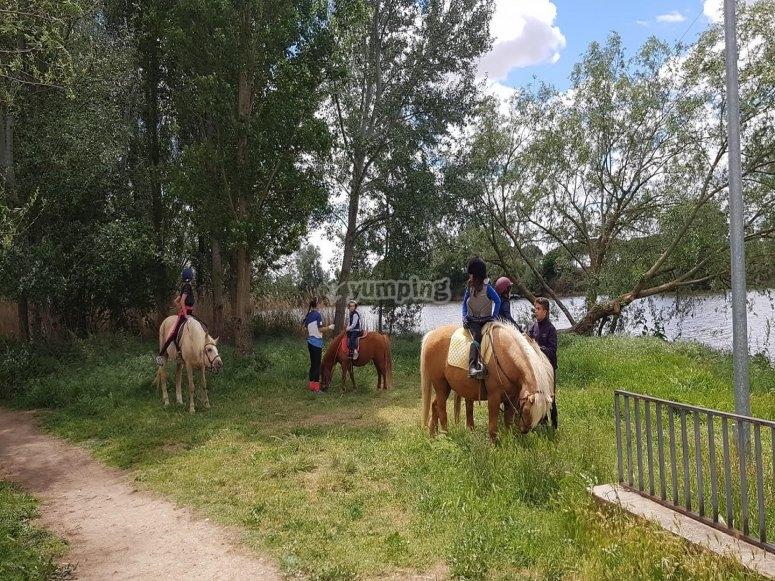 Paseo a caballo Tordesillas niños