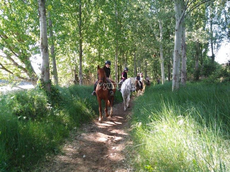Horse riding route 2 hours Tordesillas