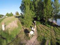 Horseback riding along the Ribera del Duero