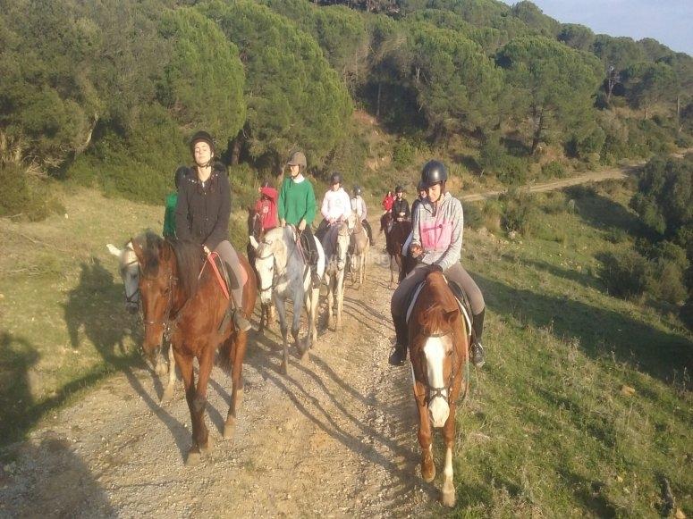 Horse riding la Vega de Antequera