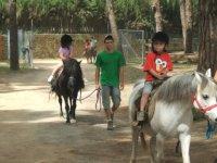Rutas en Pony