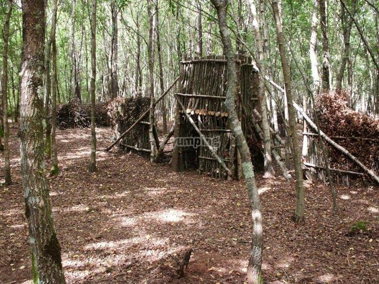 Escondites en el bosque
