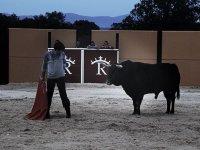 hombre delante de un toro con un capo