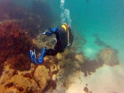 水肺潜水洗礼与两次潜水El Palmar