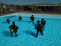 在水池潜水洗礼45分钟El Palmar
