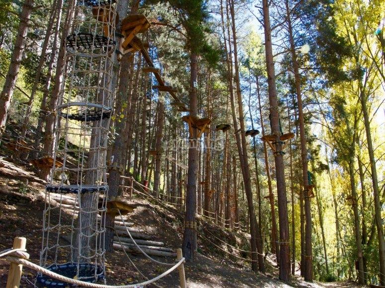Circuito entre árboles despedida de soltero