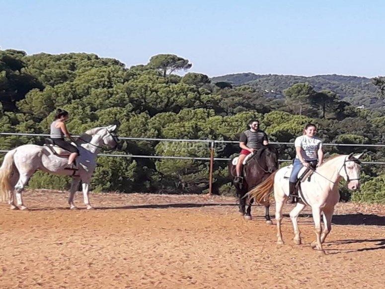 Salidas a caballo para grupos Córdoba