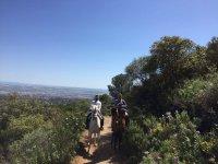 Paseo de 1 hora a caballo en Sierra Morena