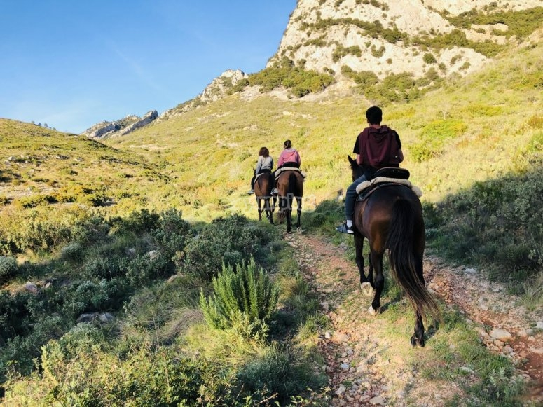 石径在马背上