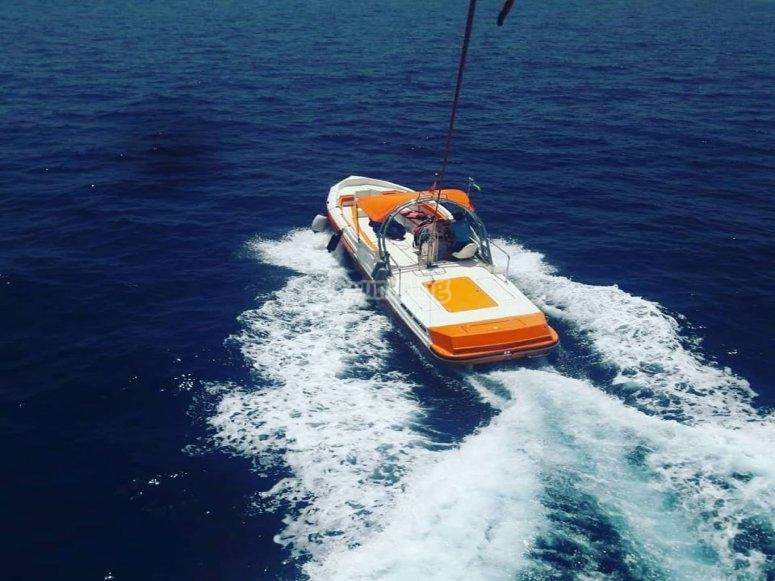 Barco con patrón profesional
