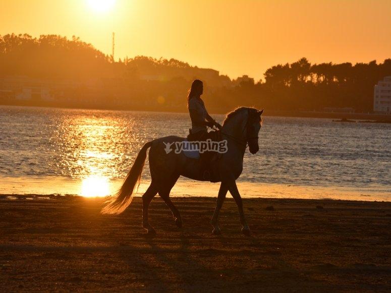 Ruta por la playa a caballo