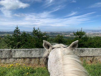 Ruta a caballo de 3 h y comida Monte de Lobeira