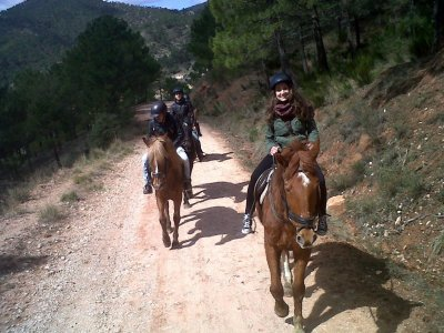 1-hour horse riding tour in Riopar trails
