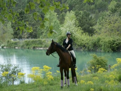 Riópar horse riding tour 2 hours Gollizo stream