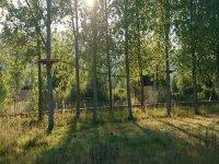 adventure park between the trees