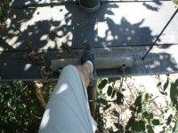 subiendo una escalera de troncos