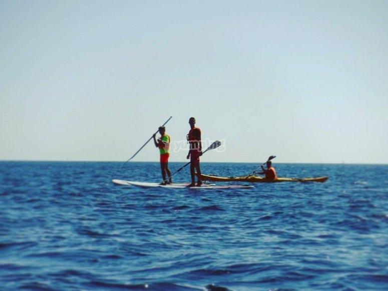 Remando en las tablas de paddle surf