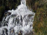 cascada rodeada de la naturaleza