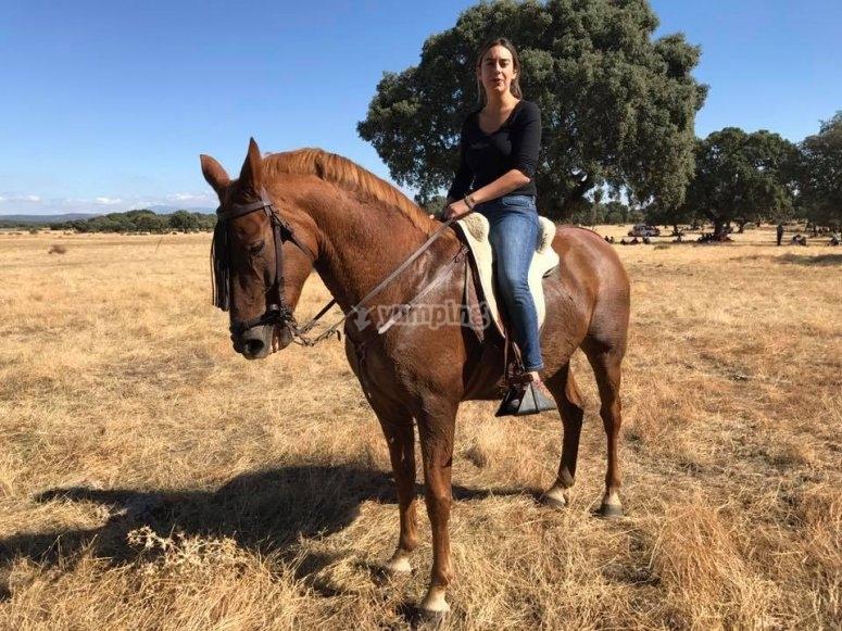 Extensos campos para ruta a caballo