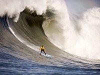 La ola perfecta