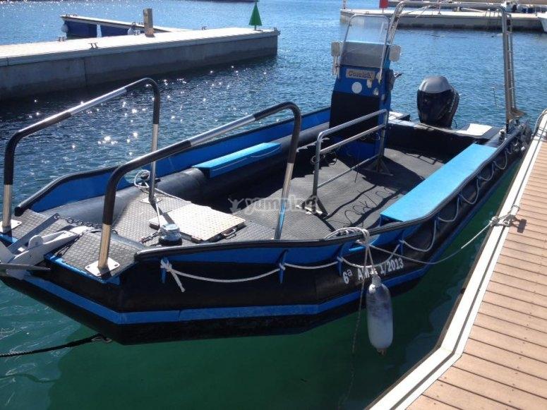 从巴塞罗那乘船潜水