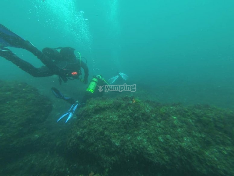 潜水洗礼课程