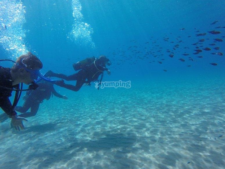 在塔拉戈纳进行第一次潜水