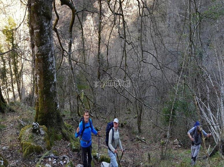 Ruta de senderismo Picos de Europa