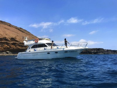 Arona private charter with skipper & 2 activities