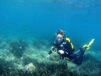 Bautismo de buceo en Canarias 3 horas