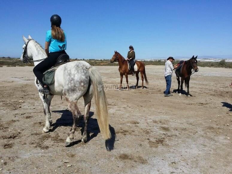 Salida a caballo para grupos Almería