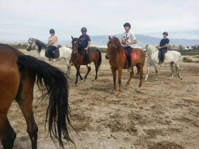 Horse riding trip Roquetas de Mar 1 hour