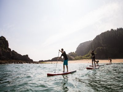 Paddle surf equipment rental 1 hour in Ondarroa