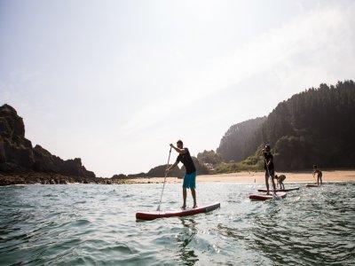 Alquiler material paddle surf 1 hora en Ondarroa