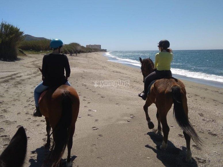 Ruta a caballo por Granada