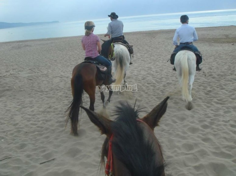 Paseando a caballo por playa Granada